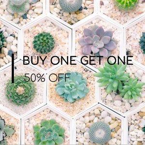 Other - BOGO 50% off